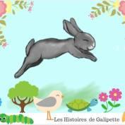 Galipette1